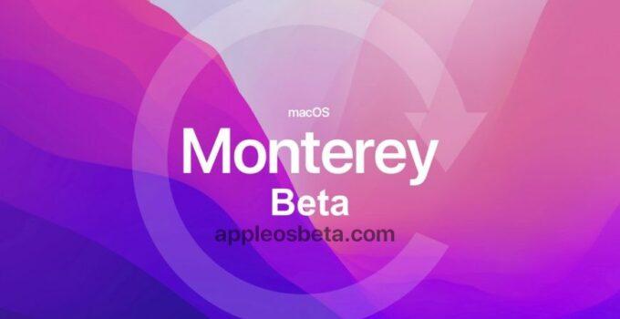 How to downgrade macOS 12 Monterey beta to macOS Big Sur